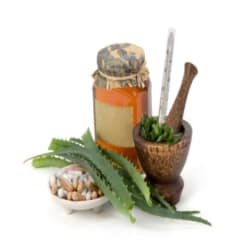 Aloe Vera as an Anti Inflammatory