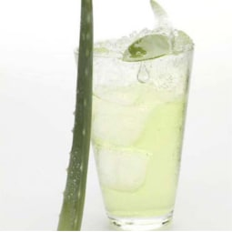 Try Aloe Vera for Acid Reflux