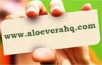 Aloe Vera HQ.com