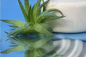 Aloe Vera Anti Wrinkle Cream