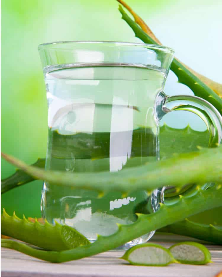 Aloe Juice in Jug
